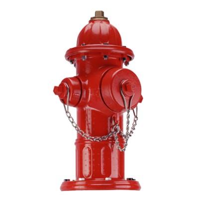 Hidrante Anticongelante | Super Centurion 250